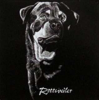 ROTTWEILER CUSTOM ART DOG DESIGN SWEATSHIRT T SHIRT 731