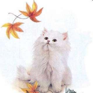NEW Cat T Shirt White Autumn Leaves Kitten L, XL Adult