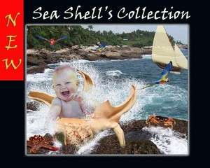 SEA SHELL Digital Backgrounds Children Templates baby fairytale Frame