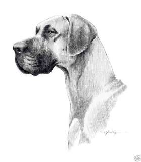 GREAT DANE Dog Drawing ART NOTE CARDS by Artist DJR