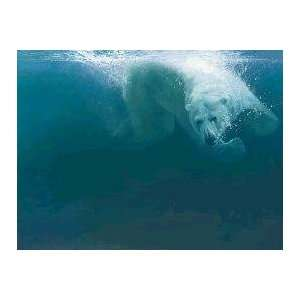 John Seerey Lester   Polar Impact Canvas Giclee