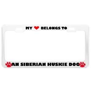 An Siberian Huskie Dog Pet White Metal License Plate Frame