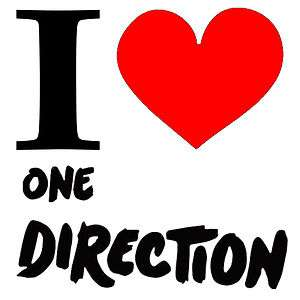 NEW Screen Printed TShirt I Heart Love One Direction Music S 3XL Free