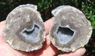 Beautiful Mexican Agate Geode Sliced Crystals Mineral