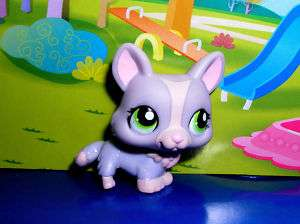 Littlest pet shop purple corgi dog #1486 NEW
