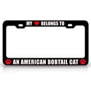MY HEART BELONGS TO AN AMERICAN BOBTAIL Cat Pet Auto License Plate