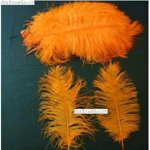 Ostrich~Orange 20 Ostrich Feather 13 16 to Decorate Eiffel Tower Vase