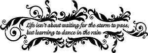 Waiting For The Storm To Pass.Vinyl Wall Decals Stickers Quotes