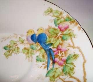 Handpainted Blue Parrots Bird Sutherland Cup & Saucer