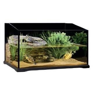 TOM Turtle Hermit Crab Habitat Mangrove Swamp 16 1/2 x 10 1/2 x 4 1/2