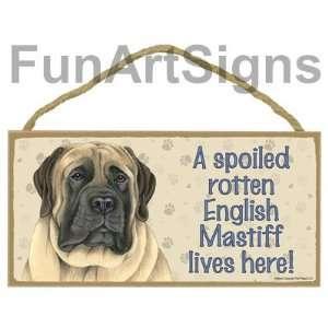 English Mastiff   A Spoiled Rotten English Mastiff Lives