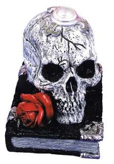 Candle Holder, Scary Skull w/Book   Decorations & Props
