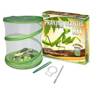 Fascinations GreenEarth Praying Mantis Kit: Toys & Games